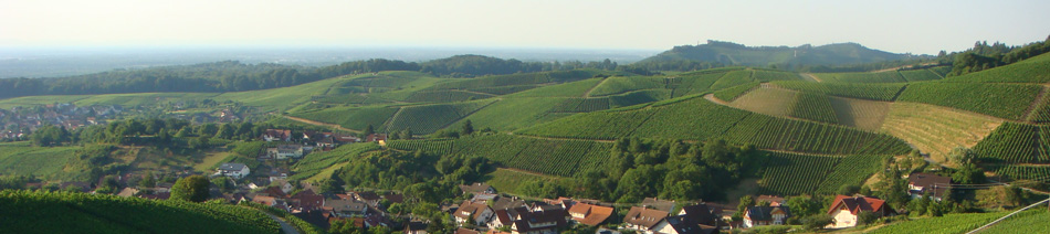 Abtsbergblick